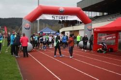 100km Staffellauf 2015